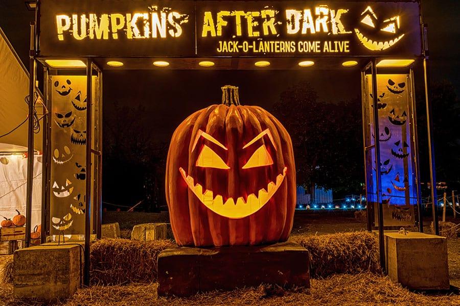 September Newsletter: Hamilton's Top Five Cookies - Pumpkins After Dark Event In Milton - New Listing